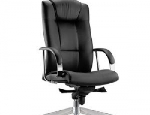 Director Chair – PR120L-16S52